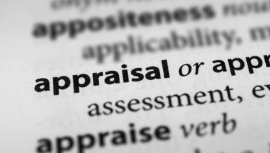 domain name appraisal